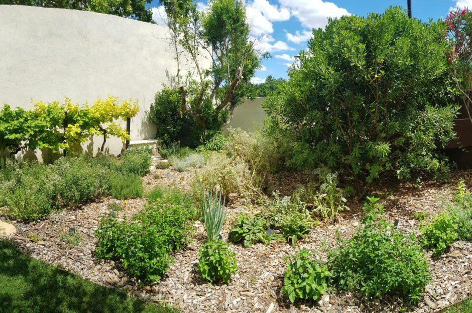 Les Herbes de notre Jardin au Mas de Boudan